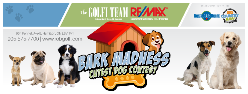 Bark Madness Dog Contest | The Golfi Team