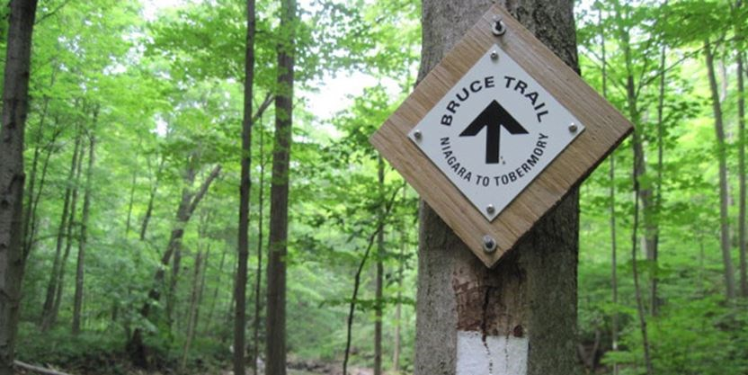 Bruce Trail Conservation